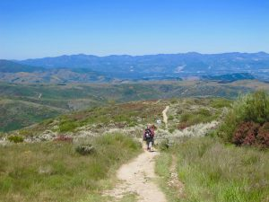 long road to Santiago