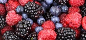 berries and polyphenols